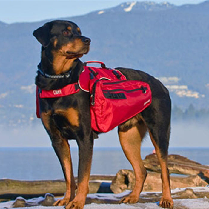 Ultimate Dog Trail Pack