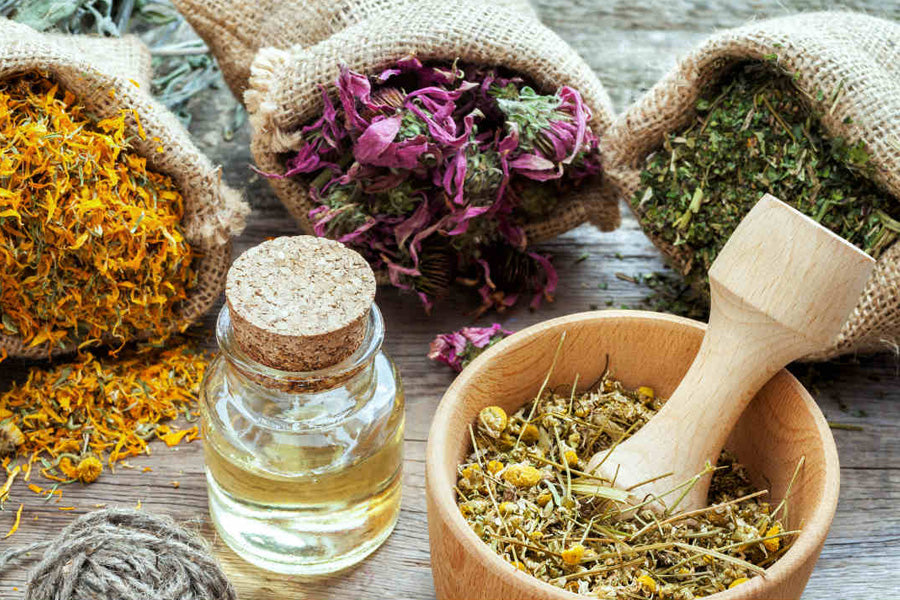 Adaptogens: Fine Tuning Your Stress Response