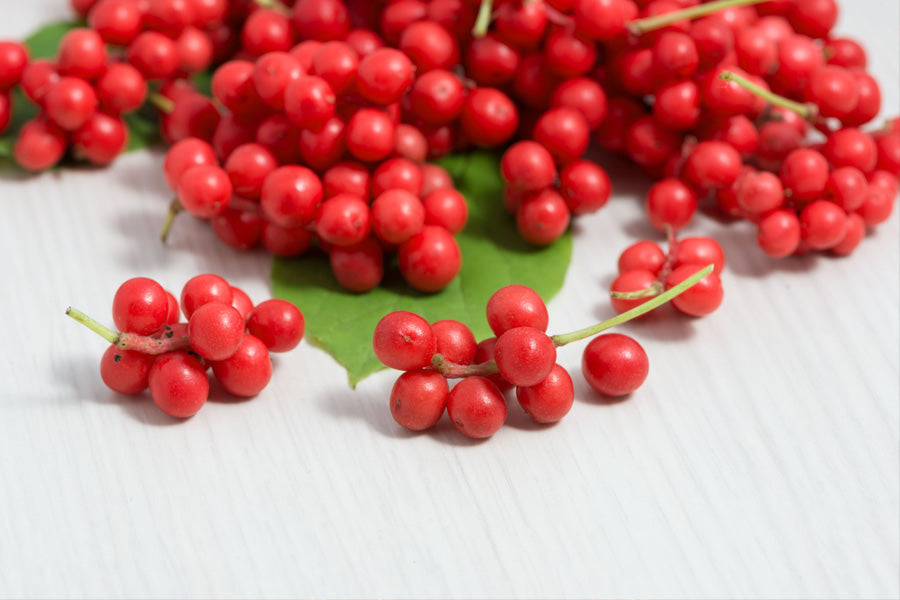 Benefits of Schizandra