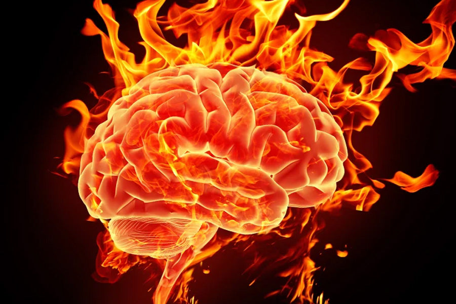 Reduce Inflammation in Your Brain