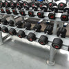 Life Fitness Dumbbells with rack