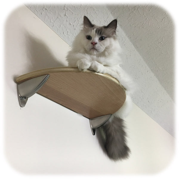 Purrfectly Catastic Creations | Handcrafted modern cat climbing wall mounted furniture shelf shelves step steps stairs perch tree tower