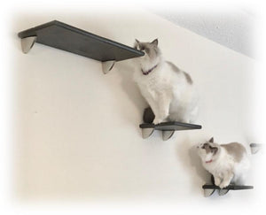 Purrfectly Catastic Creations, Cat Shelf, Cat Shelves, Cat Wall Shelf, Cat Wall Shelves, Cat Perch, Cat Wall Perch, Cat wall tree, wall mounted cat tree, cat wall mounts, cat wall playground, Cat Tree Shelves, Cat Wall Tree Tower,  cat wall furniture, cat shelving, cat wall steps, cat wall stairs, cat climbing wall, handcrafted cat furniture trees towers