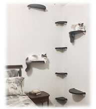 Load image into Gallery viewer, Purrfectly Catastic, cat cats kitten kitty modern contemporary wall mount mounted indoor shelf shelves shelving step steps stairs bed corner condo tower hammock house perch perches furniture climbing handcrafted tree trees tower towers wave modular wood w