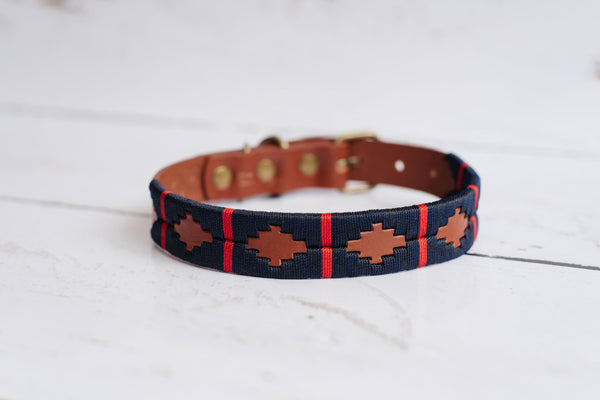 Nautico Dog Collar