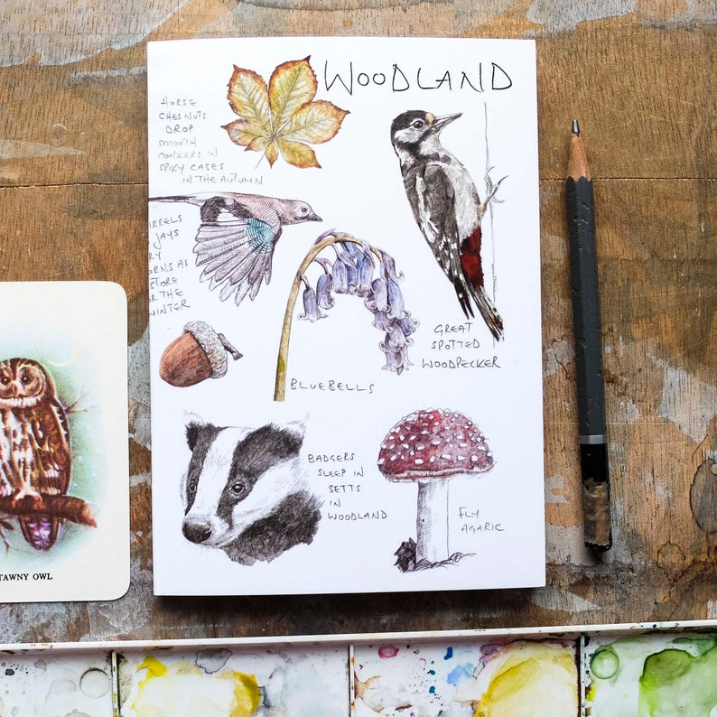WOODLAND ILLUSTRATED NOTEBOOK