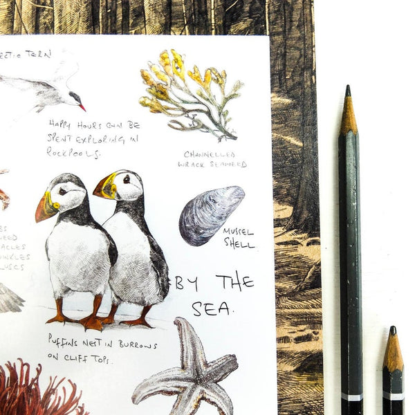 BY THE SEA  ILLUSTRATED NOTEBOOK