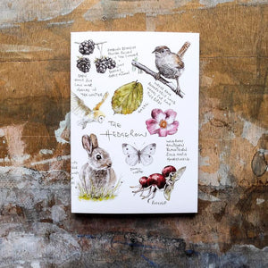 A6 HEDGEROW ILLUSTRATED NOTEBOOK