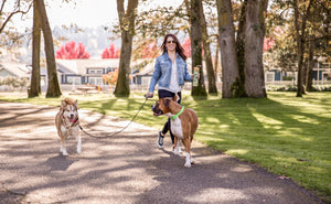 woman walking two dogs with wigzi rope dual dog leash