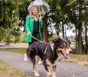 woman walking dog in the rain with waterproof dog leash