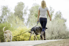 Load image into Gallery viewer, woman walking two dogs with Dual Doggie Rope Lead for Medium to Large Dogs