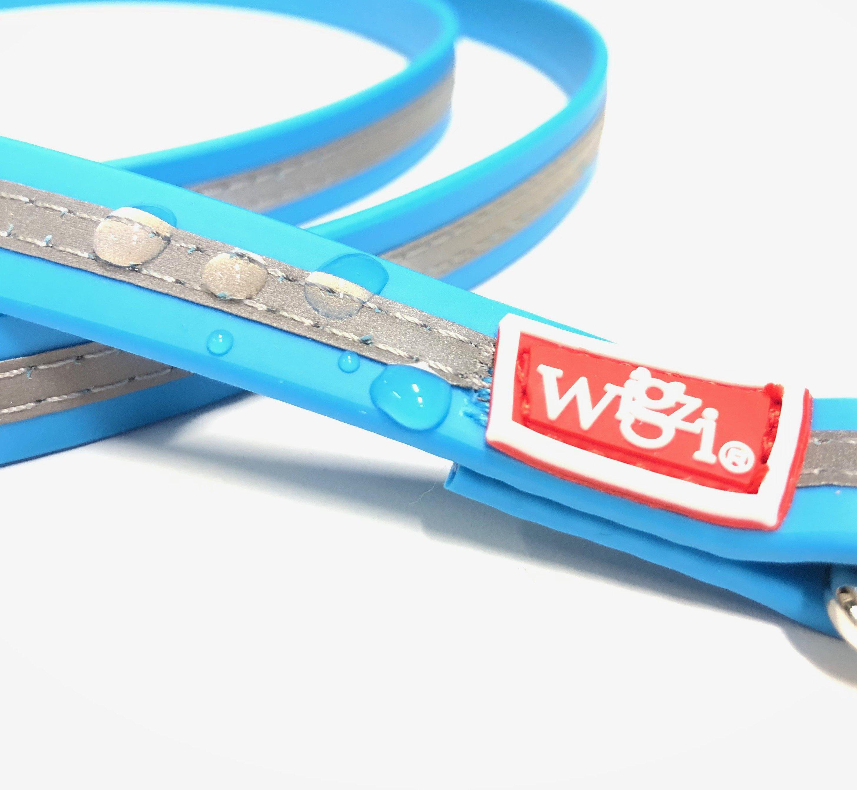 heavy duty waterproof dog leash in blue