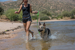 girl walking dog in shallow water with waterproof leash
