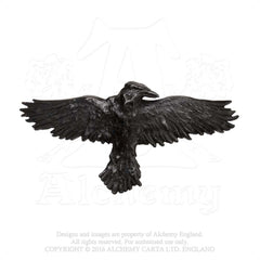 Alchemy Black Raven Hair Slide