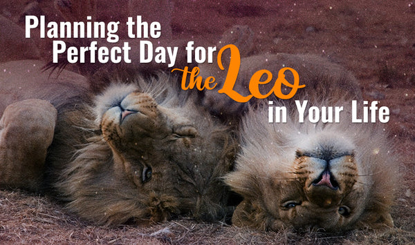 Perfect Day Plan for Leo