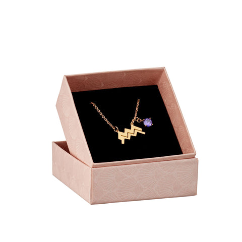 Image of Aquarius astrology sign necklace in gift box