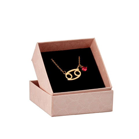 Image of Cancer astrology sign necklace in gift box