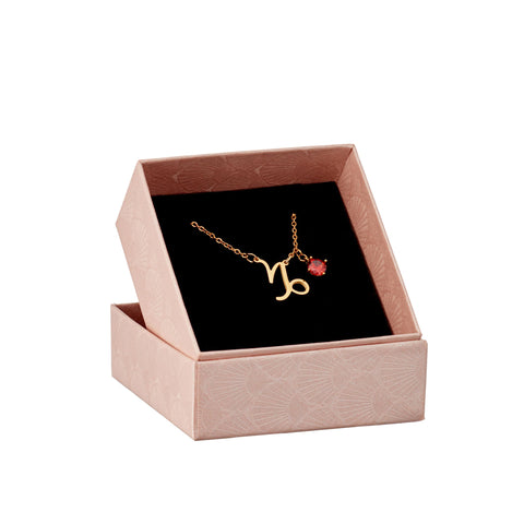 Image of Capricorn astrology sign necklace in gift box