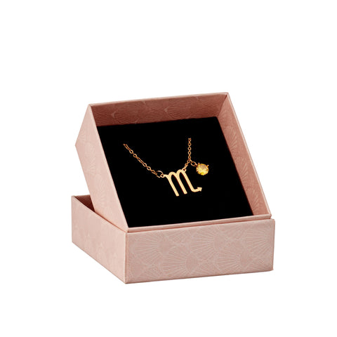 Image of Scorpio astrology sign necklace in gift box
