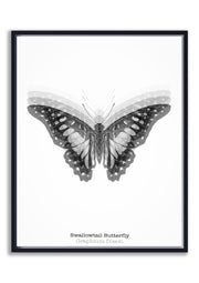 Arthropod Print Butterfly Portrait 2