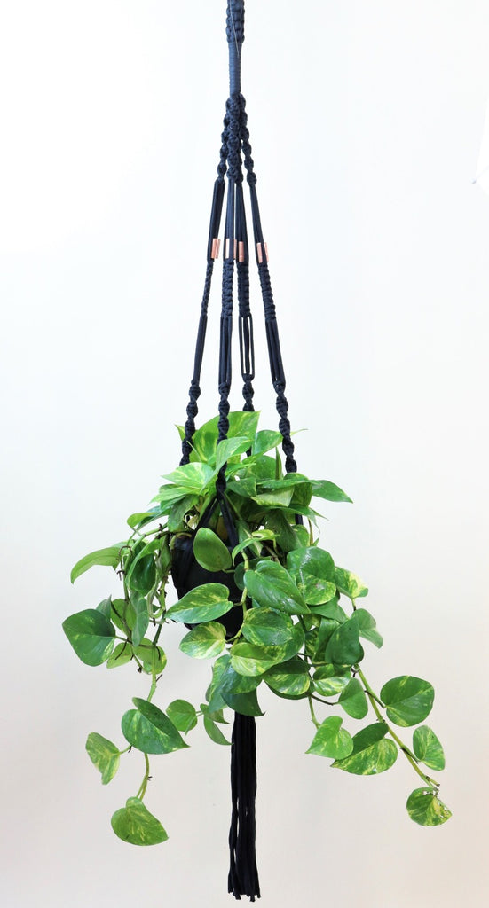 Macrame hanger; black yarn with copper