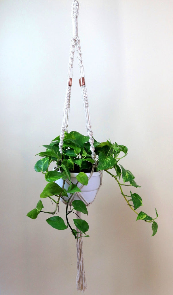 Macrame hanger; natural cotton with copper