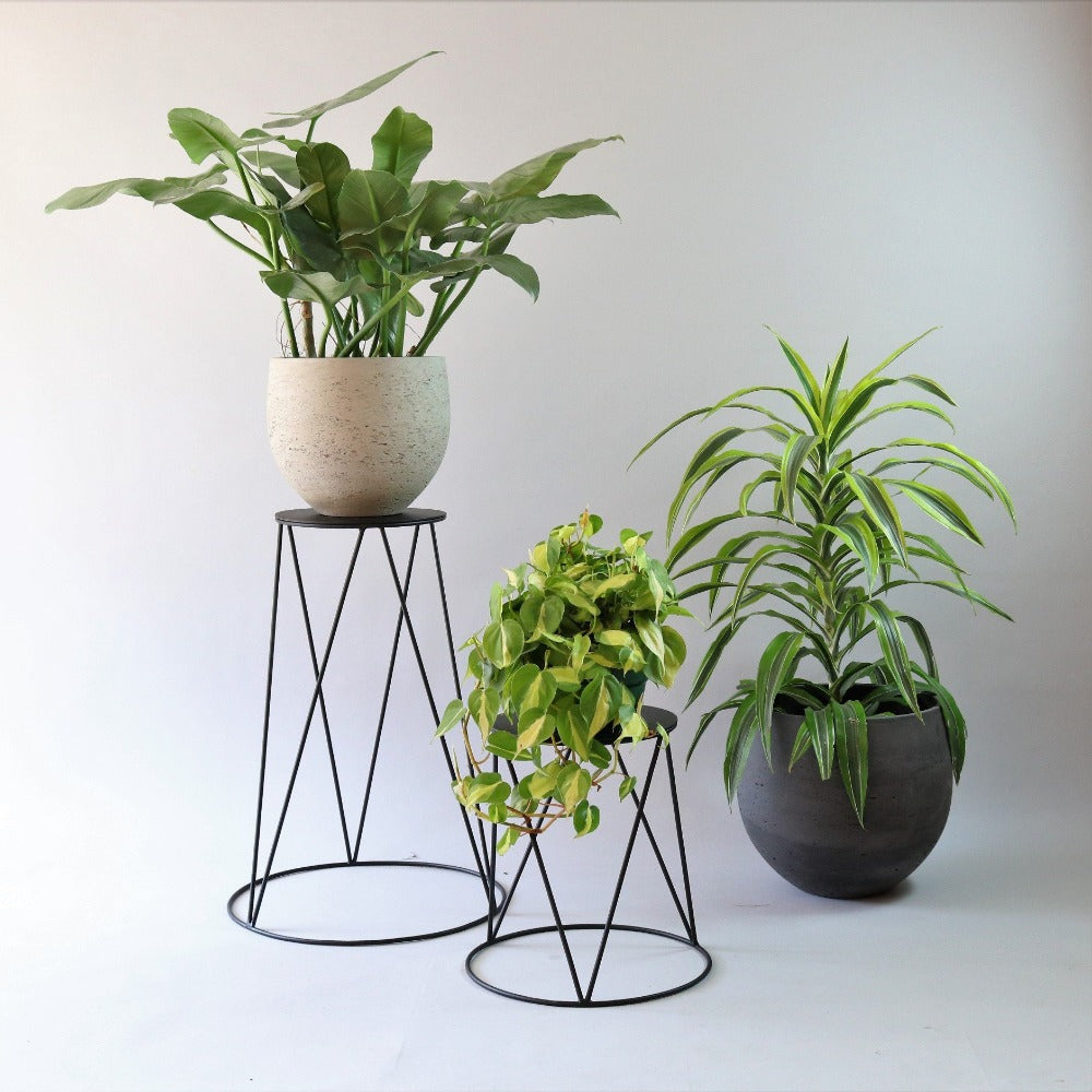 Table Bay plant stand