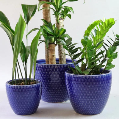 Azure ceramic pot