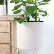 Ceramic white lines pot