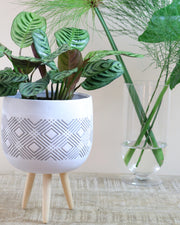 White tripod diamond pot