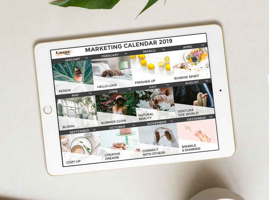 This is a Marketing Calendar Template to organize all your promotions for the year for your subscription box. Organize your team and get vendors excited to work with your start-up.