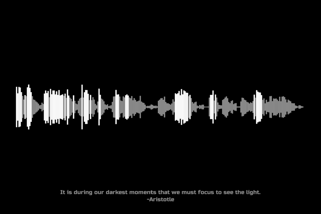 Aristotle Quote Waveform Print