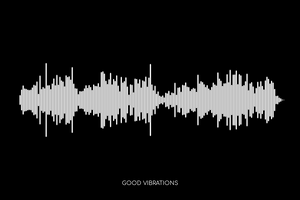 Good Vibrations by The Beach Boys Soundwave Poster