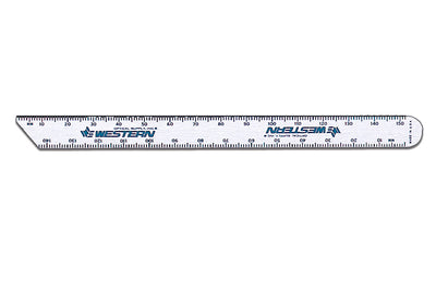 "6"" Stainless Steel PD Rule #2066"