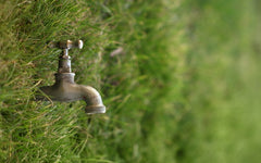 Conserve water today