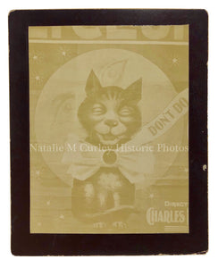 1890s Victorian CAT & Moon Sheet Music Kodak Vernacular Photo