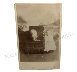 1880s Victorian Baby Pet PIG Studio Cabinet Photo