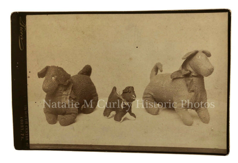 19thc Victorian Stuffed Dog Toys Cabinet Object Photo