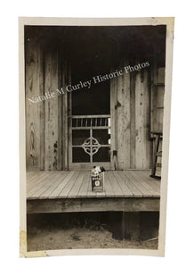 1930s Farmhouse Puppy in a Box WPA Evocative Photographer