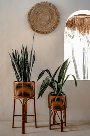 SEAGRASS WALL DECOR - Monnarita - Handmade products