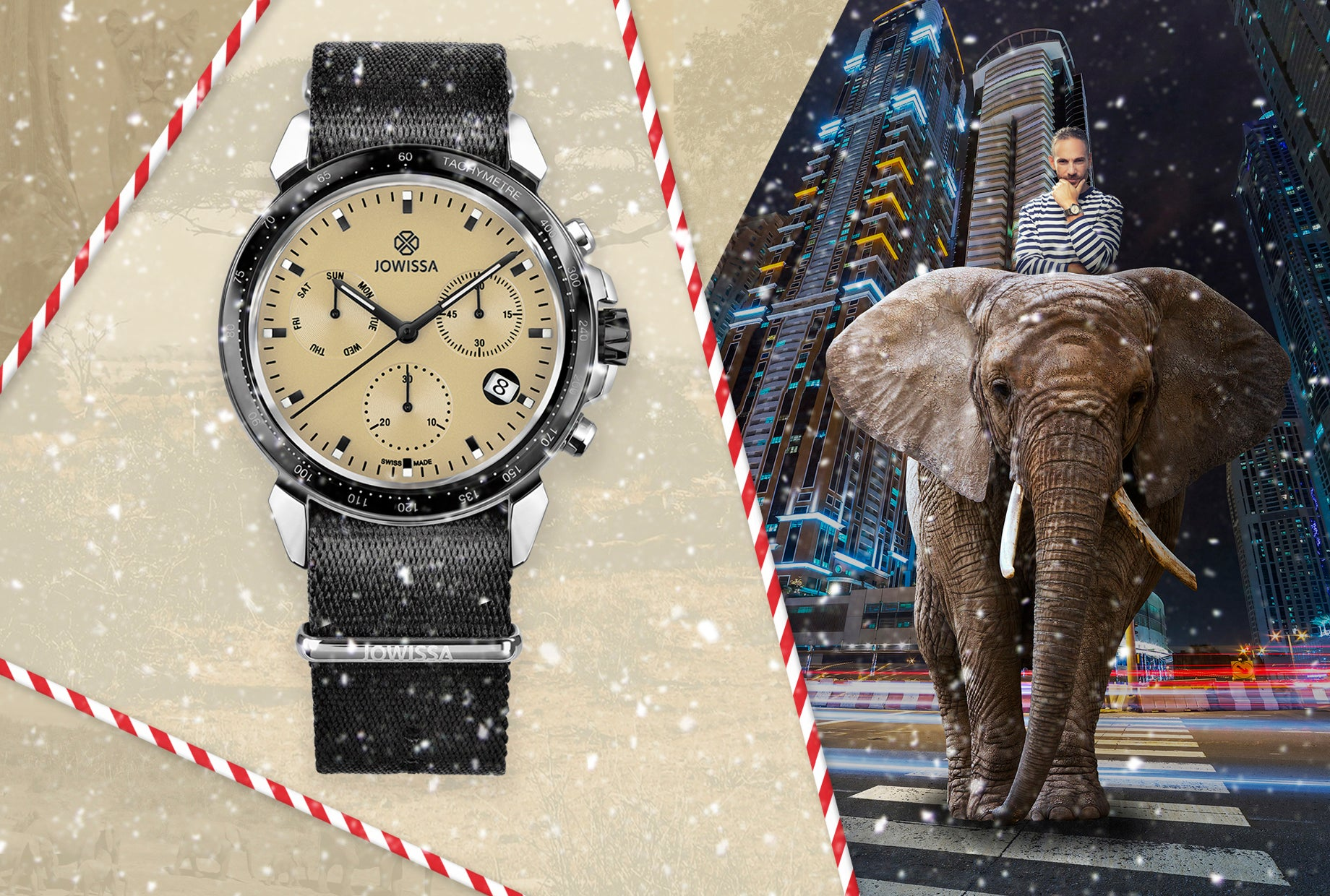 Take an Adventure with the New LeWy Safari Collection