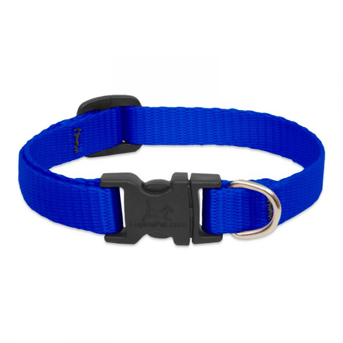 Lupine Basics Collar Blue