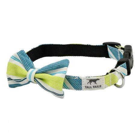 Tall Tails Spring Bowtie Collar