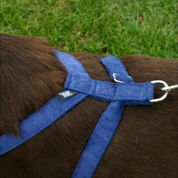 The Good Dog Company Corduroy Hemp Harness in Blue