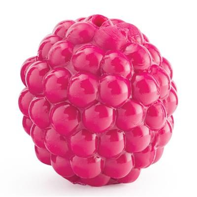 Orbee Tuff Fetch Raspberry