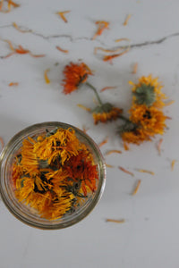 How to make a Calendula Oil and Balm