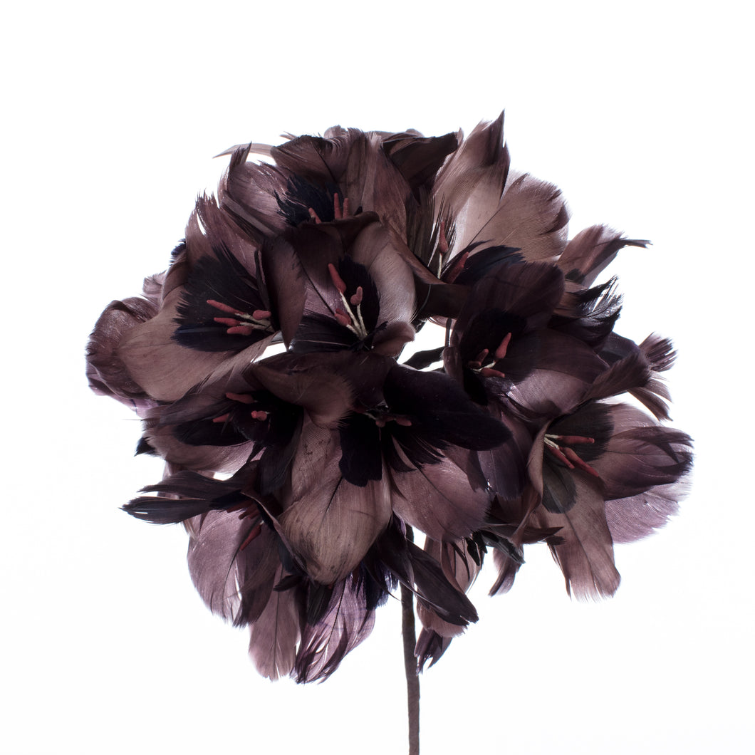 Millinery Supplies UK Coffee / Choc Feather Hydrangea