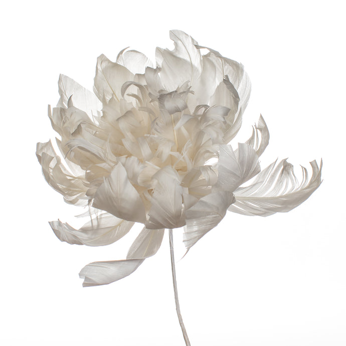 Millinery Supplies UK Ivory Crysanthemum
