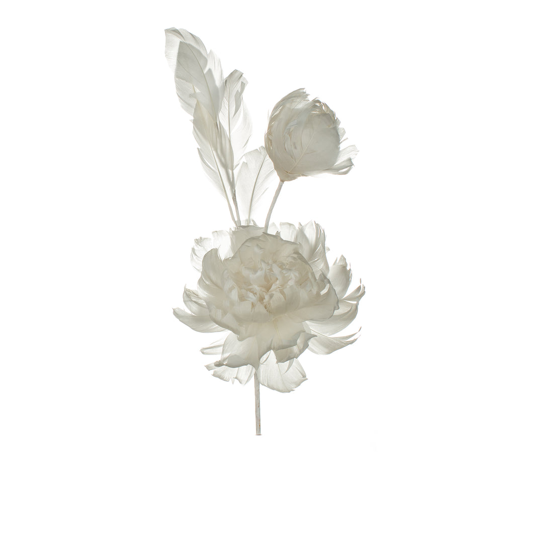 Ivory Feather Peony Millinery Supplies UK