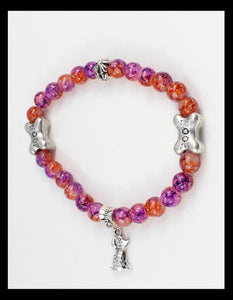 Multi Colored Bracelet with silver Charm